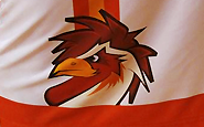 Logo Pimpões